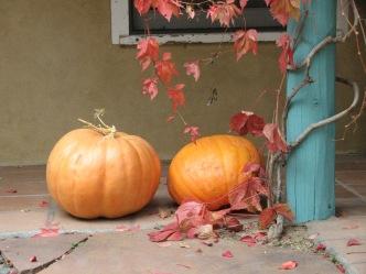 Hello Fall Photo Courtesy of S. Huerta