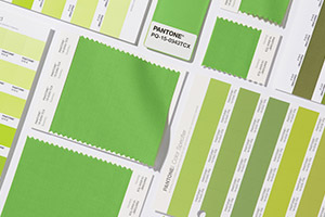 pantone-color-of-the-year-2017-greenery-standards
